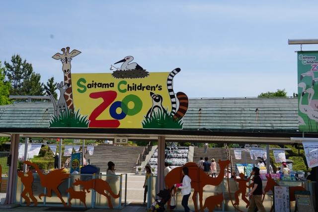 クオッカが見れる日本の動物園はどこ?ピカチュウ似の笑顔画像が可愛すぎてヤバい!